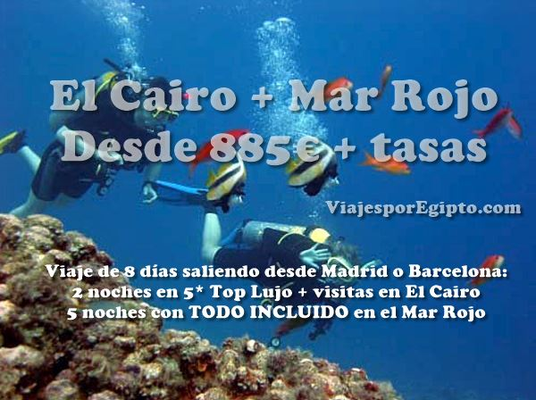 🌴 Viaje a El Cairo y Buceo en el Mar Rojo (Sharm el Sheikh/Hurgada)