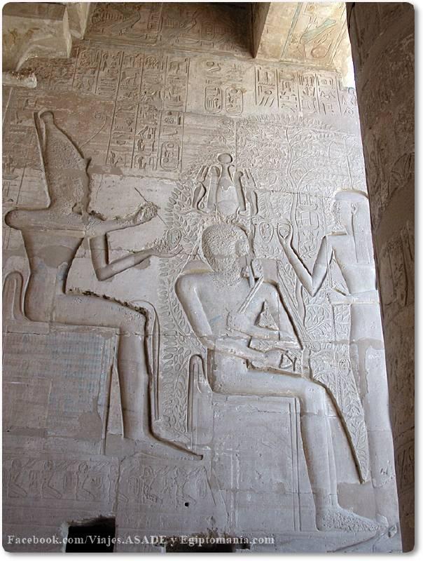 📷 Árbol de la Vida del Ramesseum