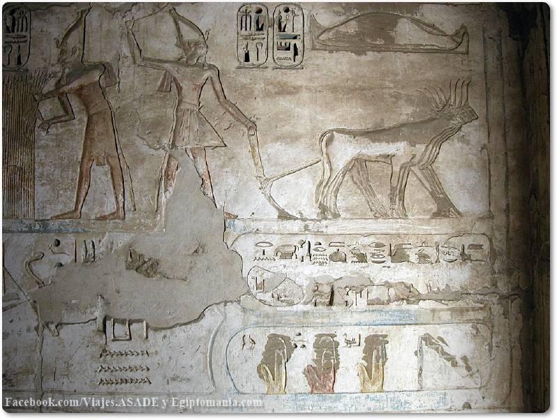 📷 Ramsés arando en Medinet Habu
