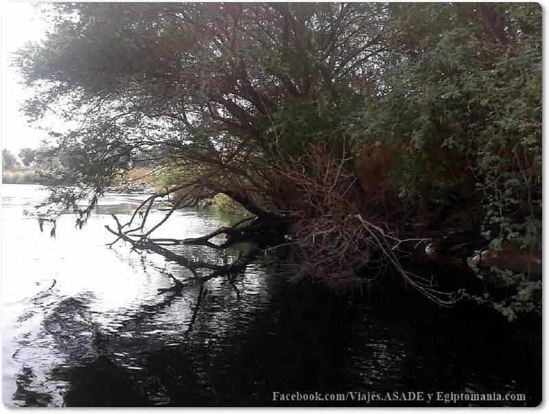 📷 Río Nilo en Asuán