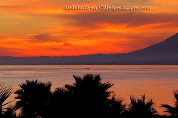 Viaje a Andalucía 🚌 y Costa del Sol